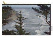 Cape Disappointment Beach Carry-all Pouch