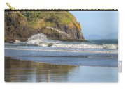 Cape Disappointment - Vertical Carry-all Pouch