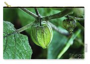 Cape Gooseberry In July Carry-all Pouch