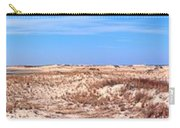 Cape Henlopen Panorama Carry-all Pouch