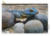 Cape Rock Lizard Carry-all Pouch