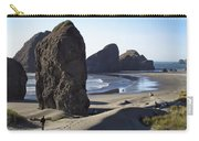 Cape Sebastian - Hunters Cove Area- Oregon Coast Carry-all Pouch