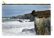 Cape St. Mary's Carry-all Pouch