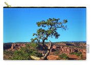 Capitol Reef 6 Carry-all Pouch