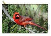 Cardinal Attitude Carry-all Pouch