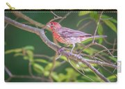 Cardinal Bird In The Wild In South Carolina Carry-all Pouch