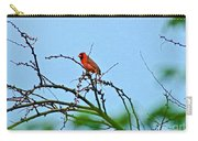 Cardinal Calling Carry-all Pouch