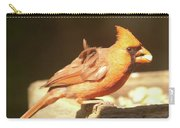 Cardinal Carry-all Pouch