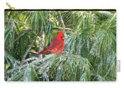 Cardinal On Ice Carry-all Pouch