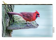 Cardinal Perched Carry-all Pouch