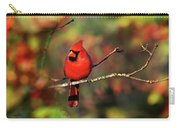 Cardinal Territory Carry-all Pouch