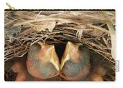 Cardinal Twins - Snugly Sleeping Carry-all Pouch