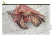 Caribbean Hermit Crab Carry-all Pouch