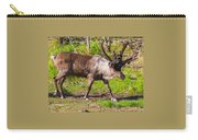 Caribou Antlers In Velvet Carry-all Pouch