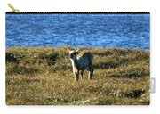 Caribou Fawn Carry-all Pouch