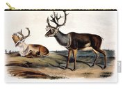 Caribou (rangifer Caribou): Carry-all Pouch