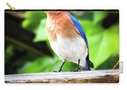 Carolina Bluebird Male Carry-all Pouch