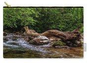 Carolina Stream Carry-all Pouch
