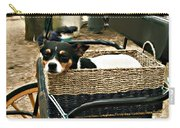 Carriage Dog Carry-all Pouch