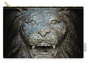 Carved Stone Lion's Head Carry-all Pouch