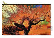 Casa Grande Abstract II Carry-all Pouch