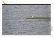 Caspian Terns Carry-all Pouch