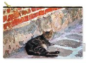Cat Against Stone Carry-all Pouch