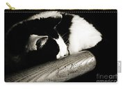 Cat And Bat Carry-all Pouch by Andee Design