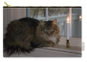 Cat By Candlelight Carry-all Pouch