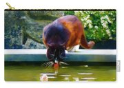Cat Drinking In Picturesque Garden Carry-all Pouch