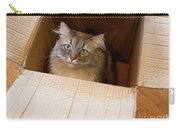 Cat In A Box Carry-all Pouch