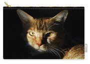 Cat In Shadow Carry-all Pouch
