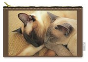 Cat Nap With Toby And Sadi Carry-all Pouch