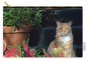 Cat Postcard Carry-all Pouch