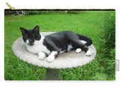Cat Relaxing In A Birdbath In The Summertime  Carry-all Pouch