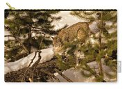 Cat Walk Carry-all Pouch by Priscilla Burgers