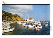 Catalina Kodachrome Carry-all Pouch