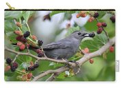Catbird Scores A Mulberry Carry-all Pouch