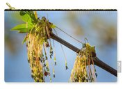 Catkin Time 2 Carry-all Pouch