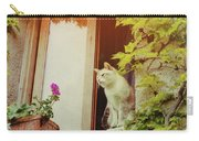 Cats Eye View Carry-all Pouch