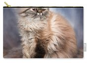 Cattitude 2 Carry-all Pouch