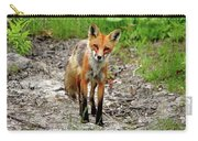 Cautious But Curious Red Fox Portrait Carry-all Pouch