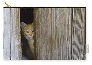 Cautious Kitty Carry-all Pouch