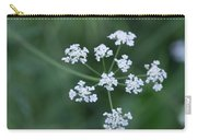 Cedar Park Texas Hedge Parsley Carry-all Pouch
