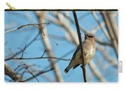 Cedar Wax Wing Carry-all Pouch