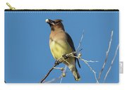 Cedar Waxwing Has A Snack Carry-all Pouch