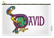 Decorative Celtic Name David Carry-all Pouch