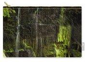 Centennial Falls Carry-all Pouch