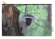 Chacma Baboon Carry-all Pouch