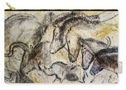 Chauvet Horses Aurochs And Rhinoceros Carry-all Pouch
